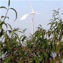 小型风力发电机家用 备用电源风力发电系统 三相交流发电机