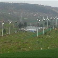 乌海小型风力发电机 低速永磁发电机 草原养殖用风力发电机