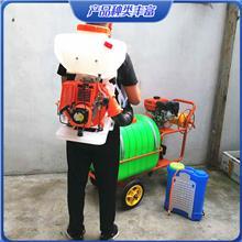 农用养殖干粉硫磺粉高射程喷粉机 汽油机动力背负式消毒防疫喷雾器