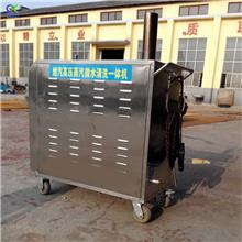 干湿两用高压蒸汽清洗机 高温高压蒸汽清洗机 汽车空调口清洗机