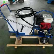 乳化沥青喷洒机 手推式小洒布机 道路沥青撒播机 工厂销售