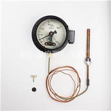WTZ-288 电接点压力式温度计 压力式温度表 桓仁温度测控仪表厂