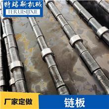 碳钢链板 非标定做载重大滚珠输送链板碳钢材质 特瑞斯厂家供应