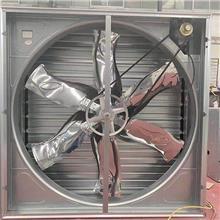 长期供应车间方型负压风机 养殖负压排风机 猪舍冷风机 诚信经营