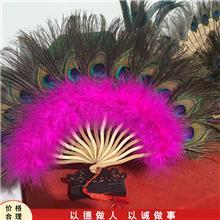 工艺品蓝孔雀标本 观赏孔雀标本 开屏孔雀标本 销售报价