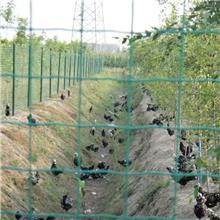 厂家现货 启华铁丝网围栏 圈地果园隔离护栏 养殖户外网格防护网