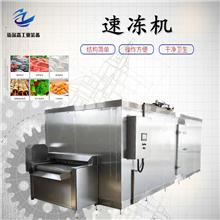 椰子肉速冻机 椰子浆速冻设备 芒果速冻机厂家销售