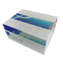 人xi胞色素b(COB)ELISA试剂盒