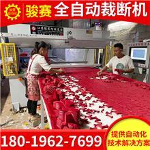 销售无痕内衣裁剪机珍珠棉异形深加工设备全自动裁断机下料机