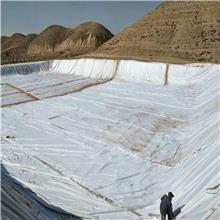 白色涤纶土工布 高渗水性土工布 厂家供应