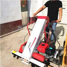 陕西高粱装袋机 玉米大豆装袋机 收粮食厂收谷机