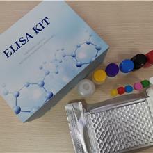 小鼠免疫球蛋白G2b亚型抗体试剂盒 IgG2belisa试剂盒 仑昌硕生物