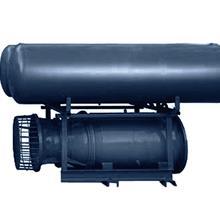 浮筒式潜水轴流泵  天津长新泵业