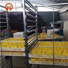 厂家和硕烘干机 恒温绿茶烘干设备 金银花循环风箱烘干流水线 菊花空气能热泵烘干机 源头厂家