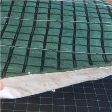 厂家供应 加筋生物毯 成本低 10天复绿