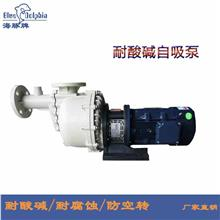 耐酸碱自吸式离心泵 卧式排污大头泵 防腐化工泵 厂家直销