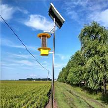 太阳能杀虫灯 LED太阳能灯 有效杀虫 骏涵咨询