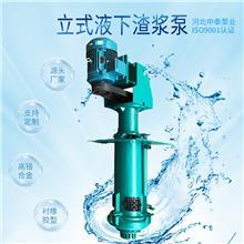 立式液下渣浆泵价格  机械工业水泵 砂砾泵 河北中泰泵业厂家排名 填料密封机械密封