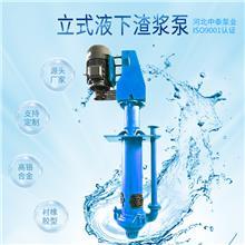 立式液下渣浆泵价格  机械工业水泵 砂砾泵 河北中泰泵业厂家排名 铬30合金