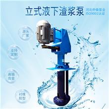 立式液下渣浆泵价格  机械工业水泵 砂砾泵 河北中泰泵业厂家排名 开式叶轮 半开式