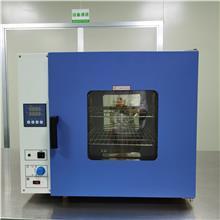 智能PID控制 可程式电热数显鼓风干燥箱 工业设备环境模拟