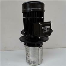 供应浸入式多级泵TDH2-5/5 冷却循环泵 机床旋涡泵 实力厂家