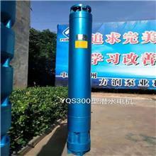 YQS300型潜水泵 QZB系列潜水轴流泵 潜水深井泵 农田灌溉潜水泵