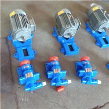 卧式不锈钢泵 大流量齿轮泵 昌越 化工原料输送泵 生产销售