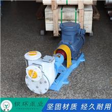 银环泵业 自吸泵 氟塑料自吸泵 自吸式排污泵 现货供应