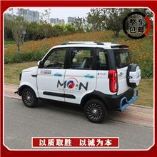 电动汽车 全封闭油电两用电瓶家用轿车女 双人小型车 家用四轮电动代步车