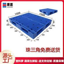 库源 广州网格双面叉车托盘 1210网格双面塑料卡板 厂家供应大尺寸托盘