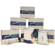 绵羊黄体生成素(LH)ELISA试剂盒沪鼎生物